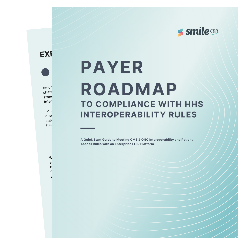 payer whitepaper roadmap graphic (1)